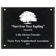 Black AcrylaStone Exterior Plaque with Holes