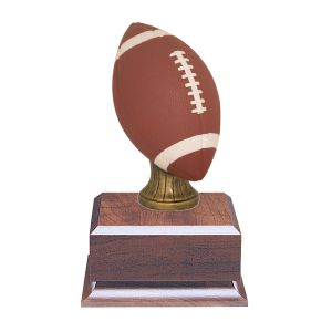 Color Football Fantasy Trophy