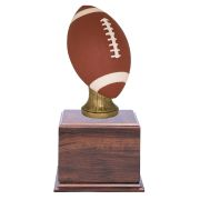 Large Color Football Perpetual Cherry Trophy